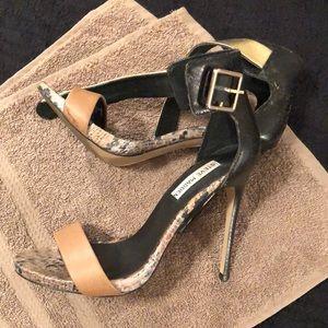Steve Madden Heel (tan, black, gold, print)
